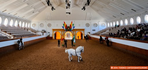 Searching for Identity at Jerez's Equestrian School