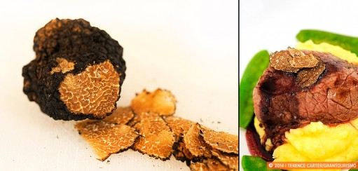 European Winter Treat in Vienna: Fresh Black Winter Truffles