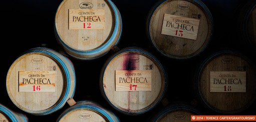 Port, Wine & Bacalhau in the Douro Valley, Portugal: part 2
