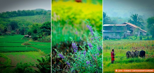 Exploring the Isaan: the Lovely Backroads to Loie
