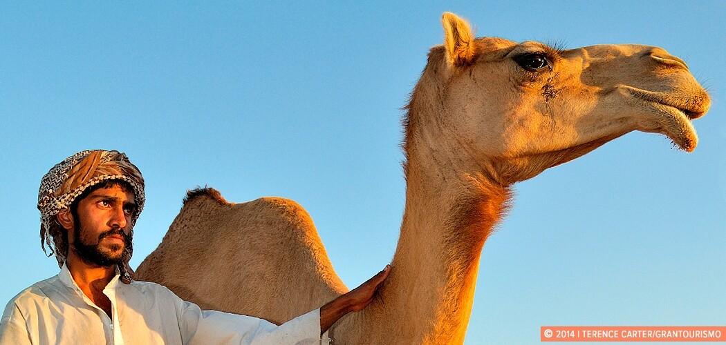 Camel wrangler, Dubai, UAE.