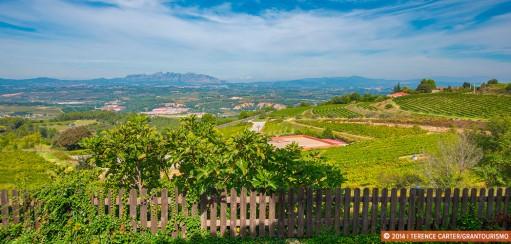 Best Cava Wineries Near Barcelona – A Penedès Wine Region Road Trip