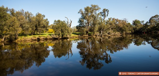 A Slow Swan River Wine Cruise to Swan Valley Wine Region