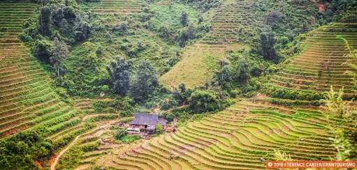 Insightful Vietnam Travel Tips from a Saigon Insider