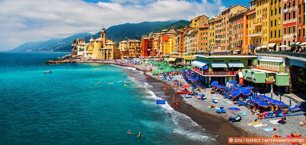 Summer in Corniglia, Cinque Terre, Italy. Copyright 2016 Terence