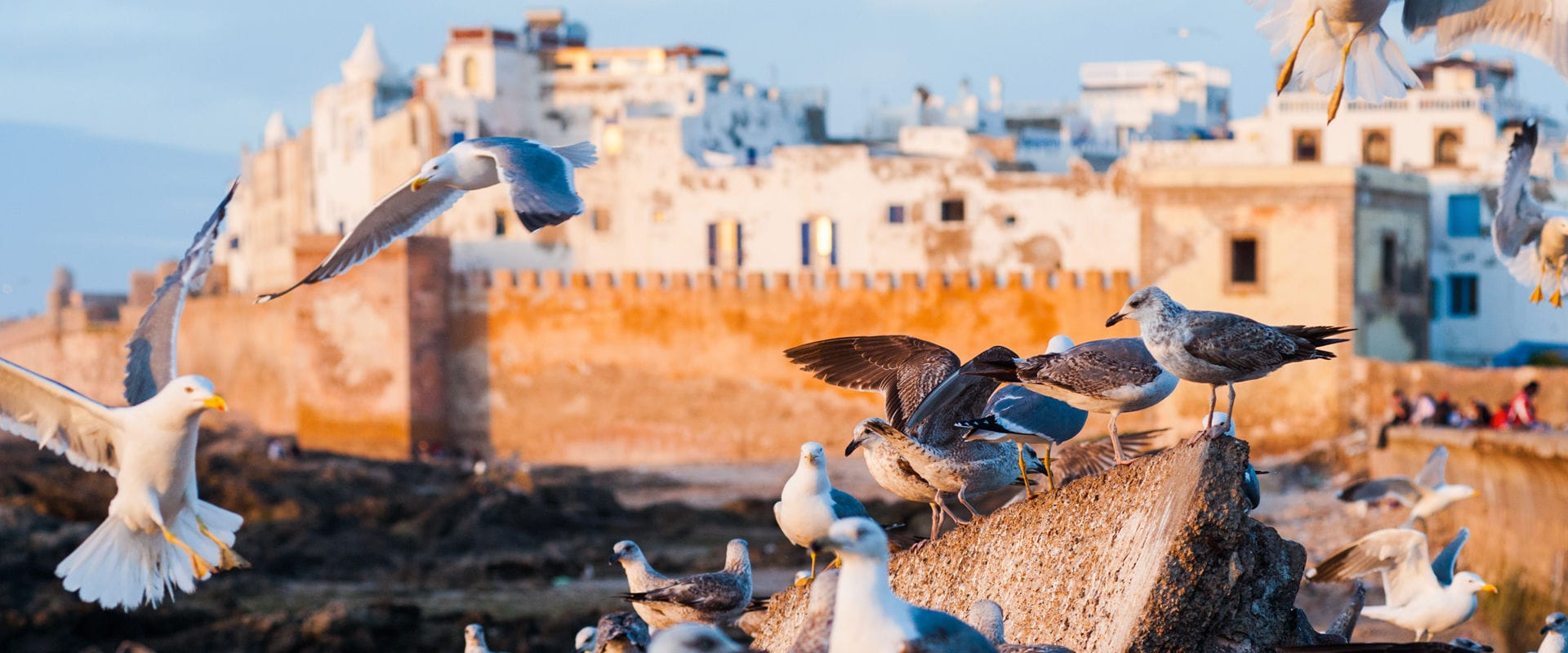 The Grantourismo Travels Guide to Essaouira. Copyright © 2017 Terence Carter / Grantourismo. All Rights Reserved.