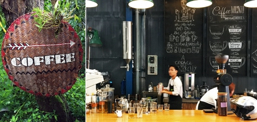 Dalat Coffee Tours – How to Savour Dalat's Growing Coffee Culture